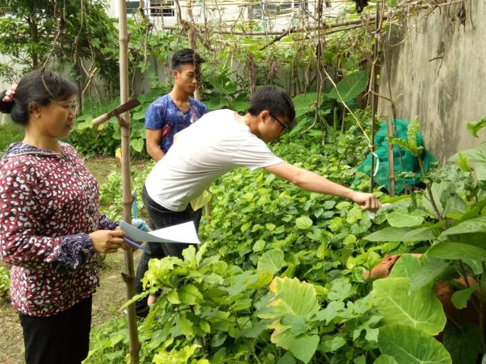 Đội xung kích phường Phú Lãm tiếp tục phòng chống dịch bệnh sốt xuất huyết năm 2018