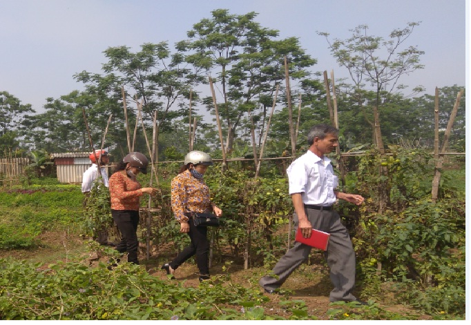 Giám sát  03 hộ sản xuất rau an toàn tạo phường Phú Lãm